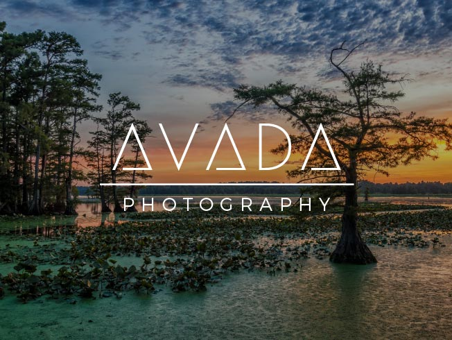 Avada - Photograpy
